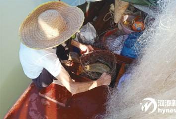 为期4个月的禁渔期于昨日零时结束 一大波生猛河鲜上市