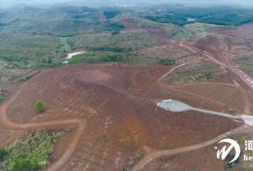 土地活 产业兴 农村富 灯塔盆地以土地流转推动要素市场化改革